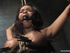 Daisy Marie gets her mouth and pussy fucked like never before in BDSM vid